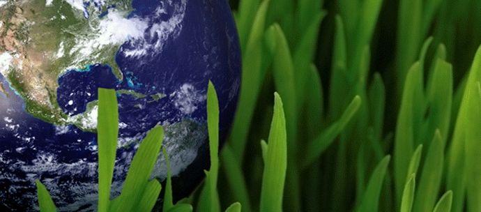 empleo sostenible